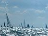Boel scheepjes op het IJsselmeer